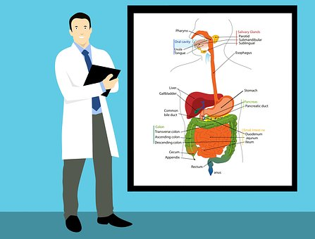 Bolest v podbřišku - diagnóza, příznaky, léčba